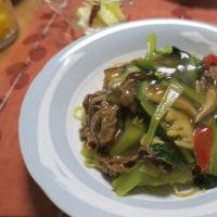 牛肉とターサイのあんかけ焼きそば&クリームシチュー&ドリア&豚肉のソテー・牛蒡ソース