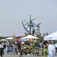 5/8(日)は辻堂海浜公園へ!