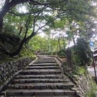 大雨被害から40日、現在の嵐山
