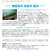 区政報告&コミュニティ・サロン「世田谷の自然の底力」2月19日開催です!