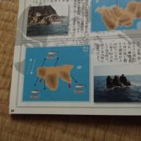 磯釣遊会 3月度例会 (四国 沖の島)