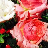 アトリエのお花!