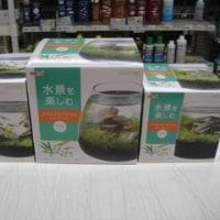 GEXの新商品