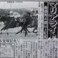 JRA賞:マリアライト&シンハライトの足跡①・・・獲得賞金額☆☆