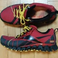 歩くための道具・靴 Reebok