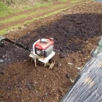 3月29日・自然薯クレバーパイプ栽培作業開始!