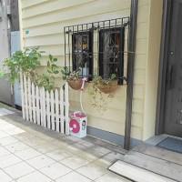 5月25日(木)おまんじゅうありがとうございました!(株)しもだミシン