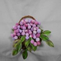 ヒメツルソバの花 小さいサイズ