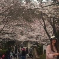 神戸市立王子動物園 1