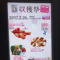 No,1328『ひょうご五國豊穣収穫祭in明石』