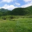 盛夏の大船山とアサギマダラ