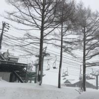 昨日から吹雪いてます☃️