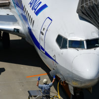 Boeing 737 ANA