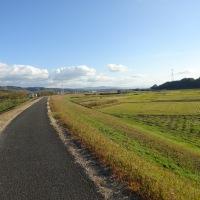 No.701 木津川の情景、朝と夕