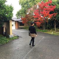しまなみ海道、尾道探訪