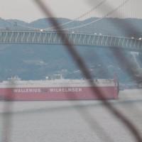 大根の醤油漬けを作り!夕方はローロー船を撮影!(^^)!
