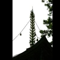 岩湧寺、まさに山寺、古色然としたお寺です。