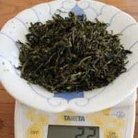 茶摘み日和♪