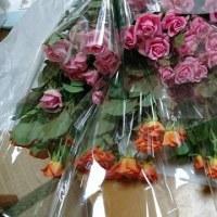 薔薇を大人買い(^^♪