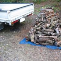 また、薪がやって来た?