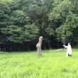 「エナジーダンス合宿 Body&Soul」vol.16開催します(8/4~6 長野県上田市)