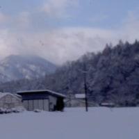 連続真冬日で冷え冷え~