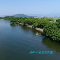 琵琶湖湖岸の緑