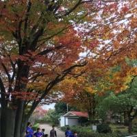 2016/11/19(土)、2016/11/20(日)伊丹練習
