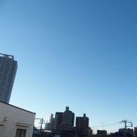 今朝(2月15日)の東京のお天気:晴れ、(2月の作品:祈りの像)