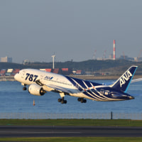ANAの1機目のB787! (10月15日 羽田空港)