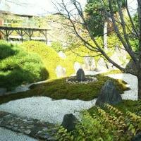 京都史跡探訪・上善寺他