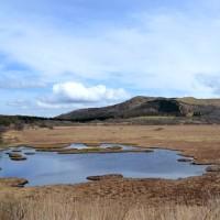 八島ケ原湿原ガイドウォークのリハーサルを友人相手にする。