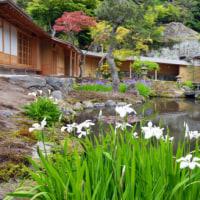 5月のカバー画像「海蔵寺庭園」