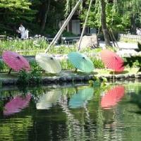 徳川園の和傘