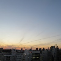 最後の紅葉 山茶花 夕陽 昨日も感謝☆