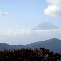 期待の富士山は