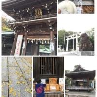 嵐CM「宮地嶽神社」