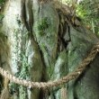 慰労の三谷温泉:蒲郡の岩巡り