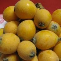 季節を感じる果物