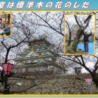 日本人の特権だ 「祝宴は標準木の花のした」