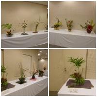 焼津市文化祭 華道展に(#^.^#)