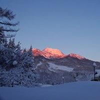 妙高山の朝焼けと雪の野鳥。きょうの一句「山眠る」