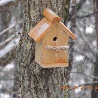 小鳥の巣箱を新築