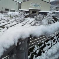 雪景色2017.2.12