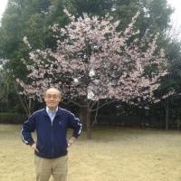3/30  10ヶ月お世話になった姫路市を後にして、秋田へ