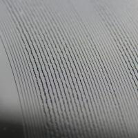 レコードの溝を、眺めて居られる。