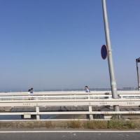 海に行く!