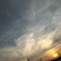 今日の飛行機雲