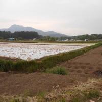 碓井城③(小田井城)