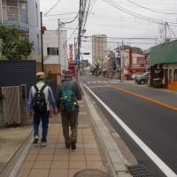 東葛・市川の辻切りを見に 11km記 (5/17)